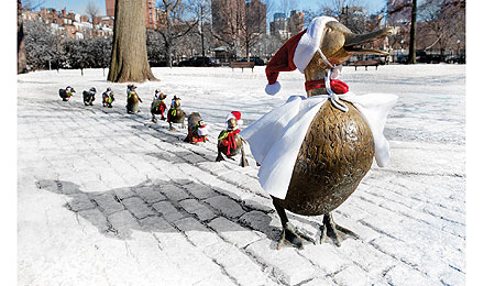 Ducklings holiday card